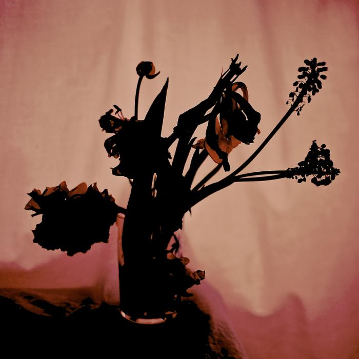 花々オペラ.jpg